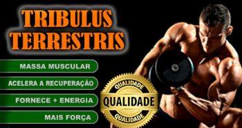 Tribulus Terrestris + Massa Muscular + Força + Energia