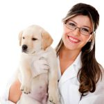 homeopatia veterinaria pet